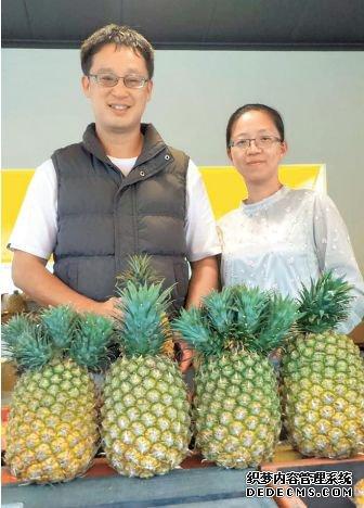 """台湾凤梨价崩 台水果商:大陆同胞不买""""台独水果"""""""